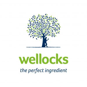 New Wellocks logo